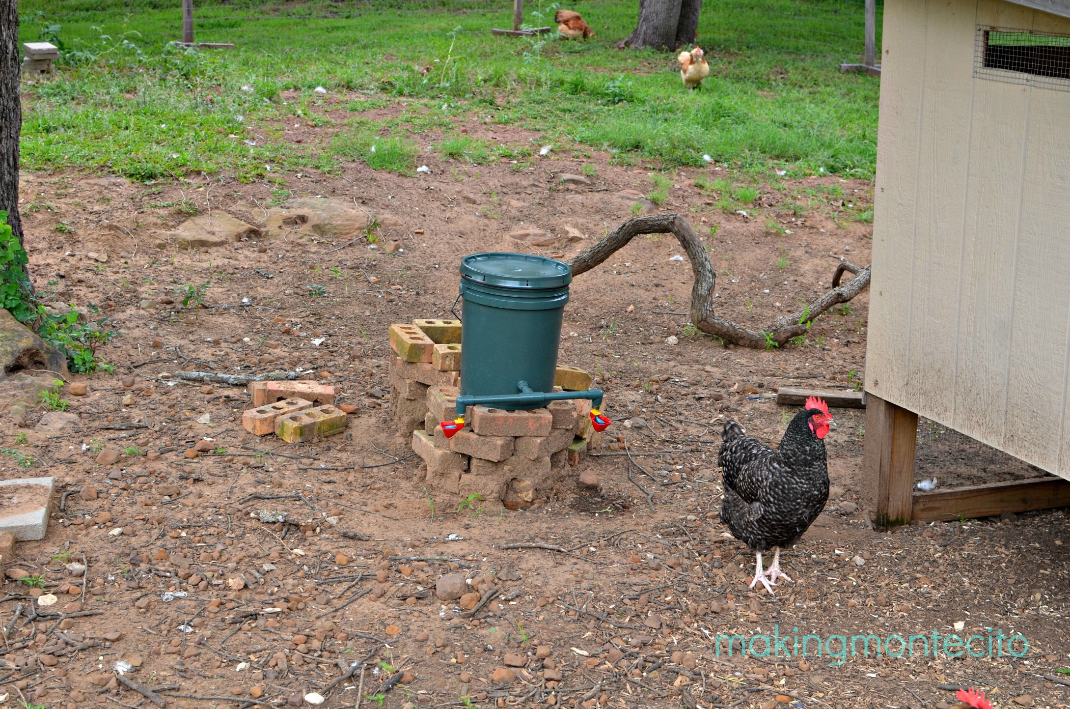 making montecito - chicken waterer 4